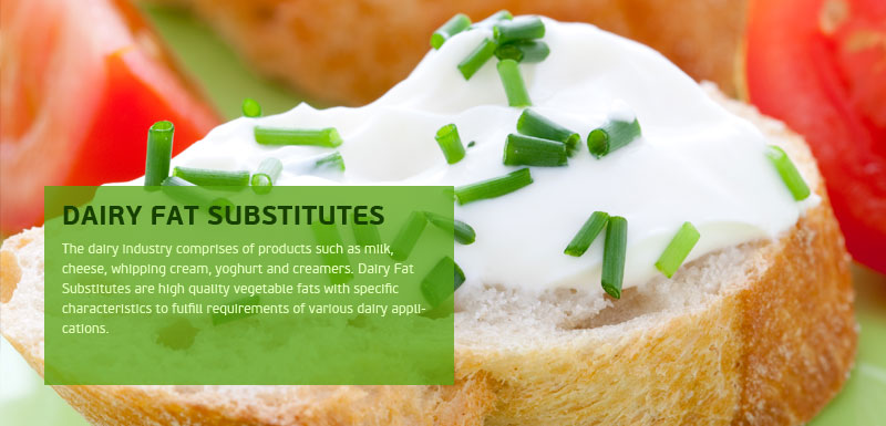 Dairy Fat Substitutes